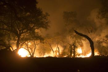Mandatory Evacuations Lifted in Thomas Fire
