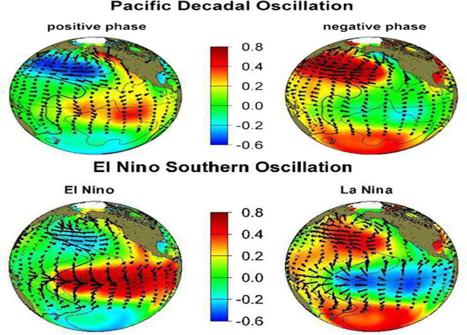 Four heat maps of the globe show the positive/warm (El Niño) and negative/cool (La Niña) phases of PDO and ENSO.