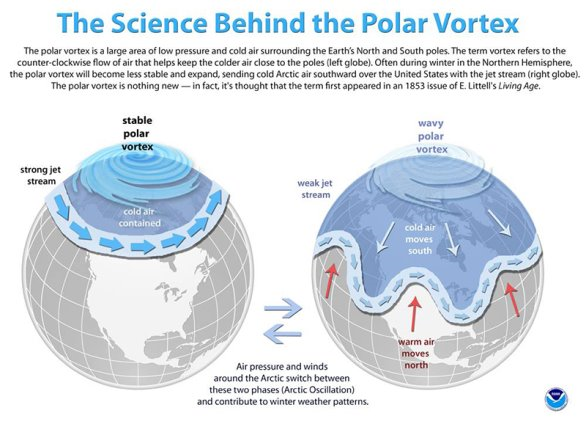 Figure 7: Typical and a-typical polar vortex patterns summarized. (Courtesy: NOAA)