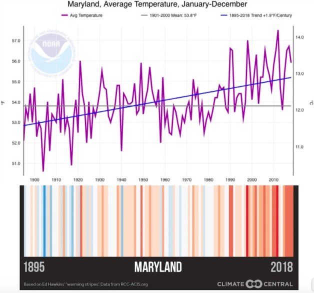 Figure 6: Warming stripes for Maryland show the differing patterns of a century of warming, as detailed below (Courtesy: NOAA/NCEI).